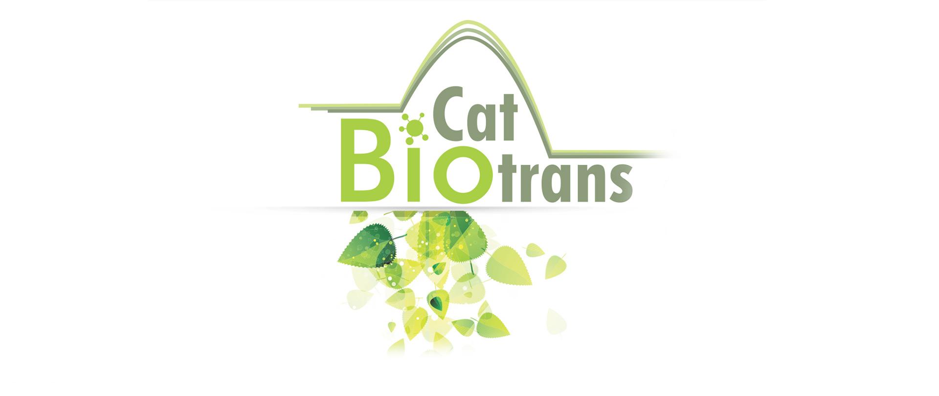logo e identidade visual para evento BiocatBiotrans 2014